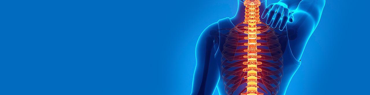 Thoracic Spine MRI scan