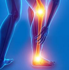 Lower Leg MRI scan